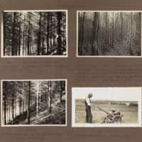 Photograph album of VSF students and grounds taken in the 1930s
