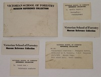 Victorian School of Forestry Museum reference collection cards
